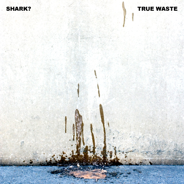 Shark? :: True Waste