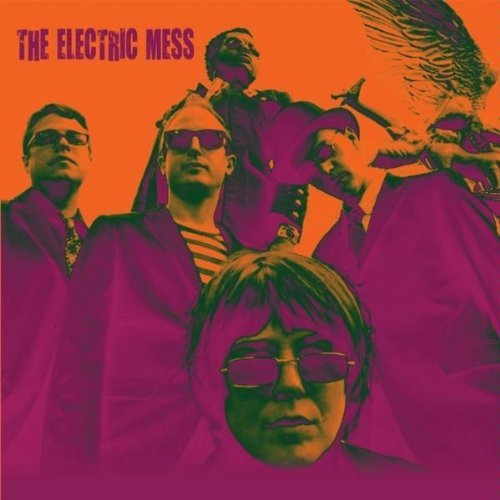 The Electric Mess :: Trash Talkin Woman